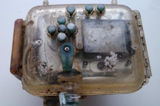 Câmera fotográfica perdida há 6 anos viaja 9600 Kms, é devolvida para a dona e mantém as fotos intactas